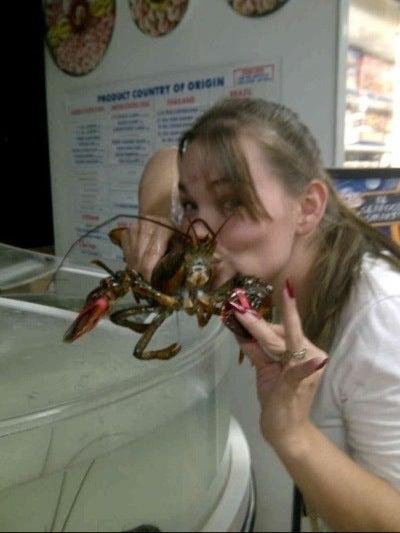 Mmmm Lobster! GooseChase image