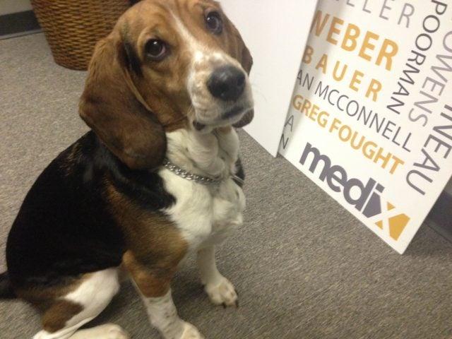 Medix-Rez