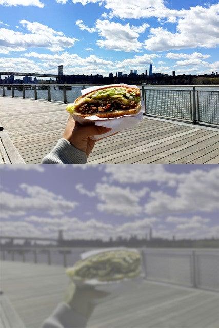sandwich-dog-vision
