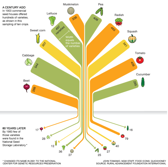 food-variety-infographic