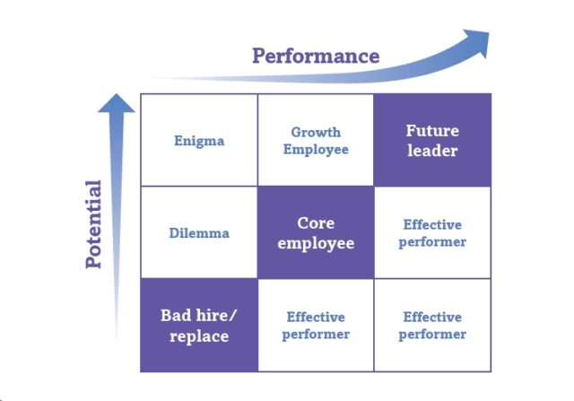 9 Box Grid Measuring Employee's leadership Potential