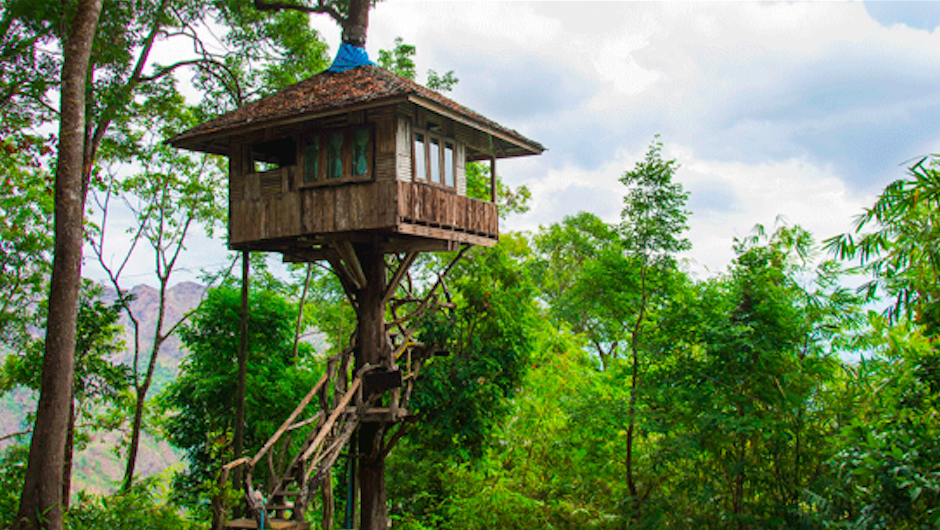 5 Ways To Build A Business Empire Like Treehouse Master