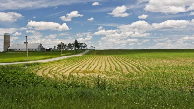 8 AgTech Accelerators That Are Changing The Game