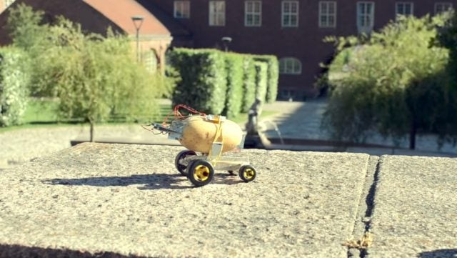 self-driving potato pontus