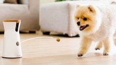 Furbo Tech Gadgets for Your Pet