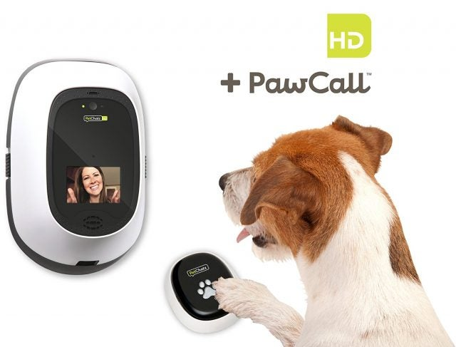 PetChatz PawCall HD Video Conferencing