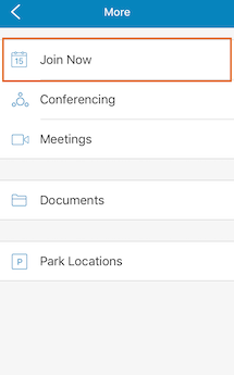 RingCentral Meetings video conferencing app Features
