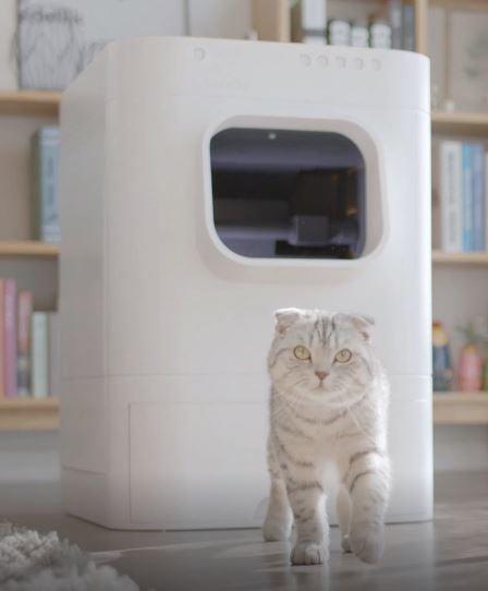 Smart cat toilet