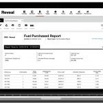 Verizon Reveal Fuel Purchase Report