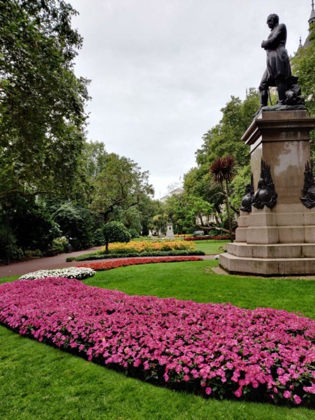 Flower Garden photo taken on OnePlus 7