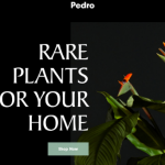rare plants store homepage