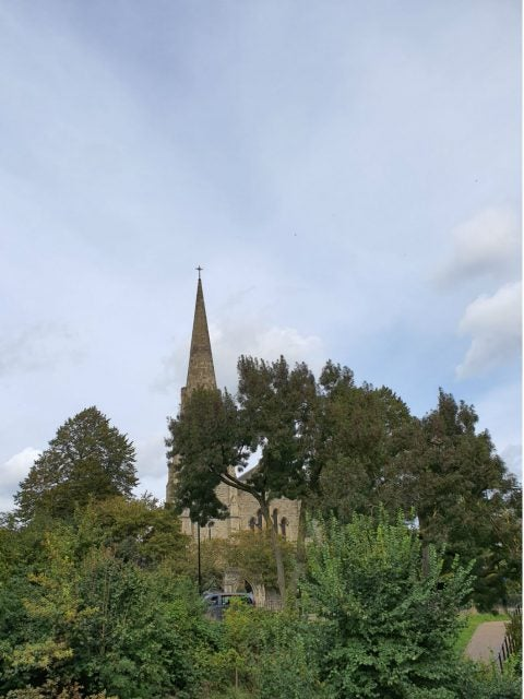 church in background behind trees