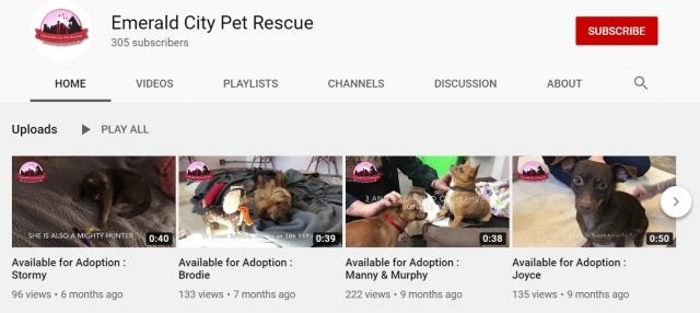 Emerald City Pet Rescue on YouTube