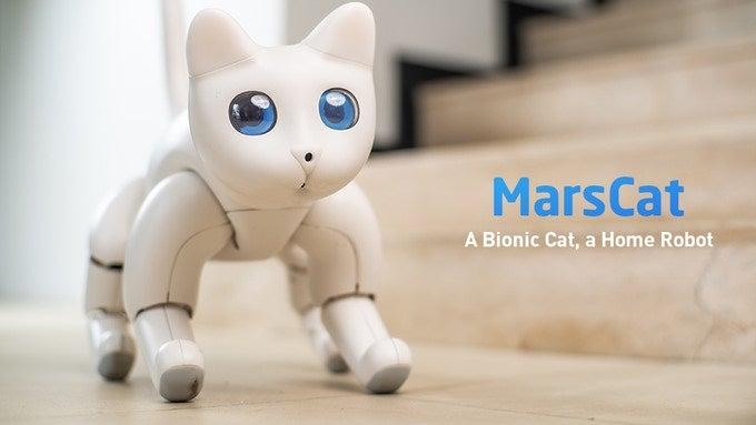 MarsCat robot