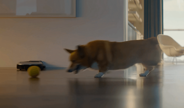 ballie chased by dog video screenshot