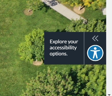Accessibility options for your website