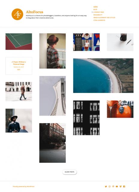 wordpress autofocus theme