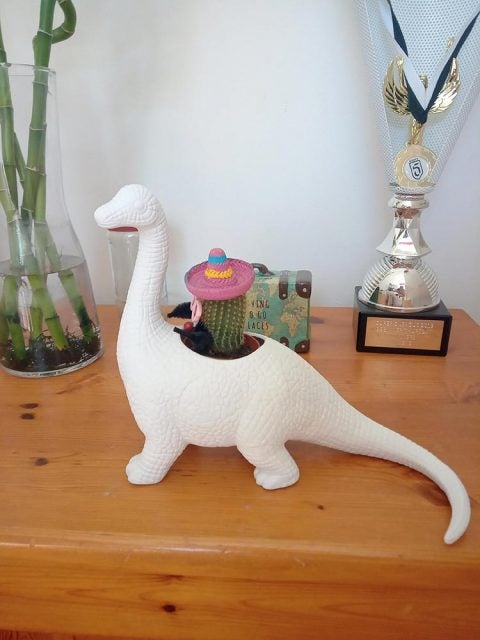 dinosaur vase with cactus and sombrero