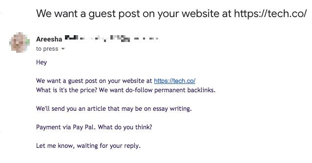 essay writing guest post