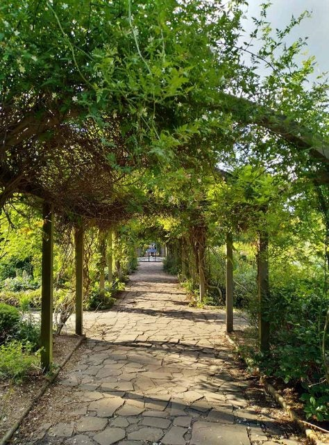 hanging gardens trellace